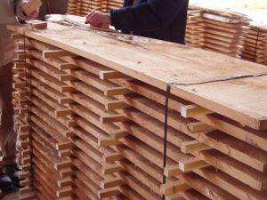 Lancashire Woodlands Project – Final Report